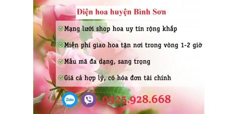 Shop hoa thị trấn Châu Ổ - Bình Sơn