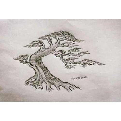 Sưu tầm 29 điều lưu tâm khi tạo hình cây cảnh