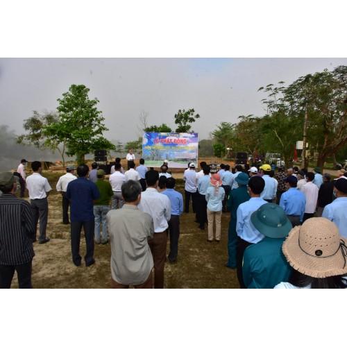 Phát động phong trào Mai vàng trước ngõ ở làng cổ Phước Tích, Phong Điền