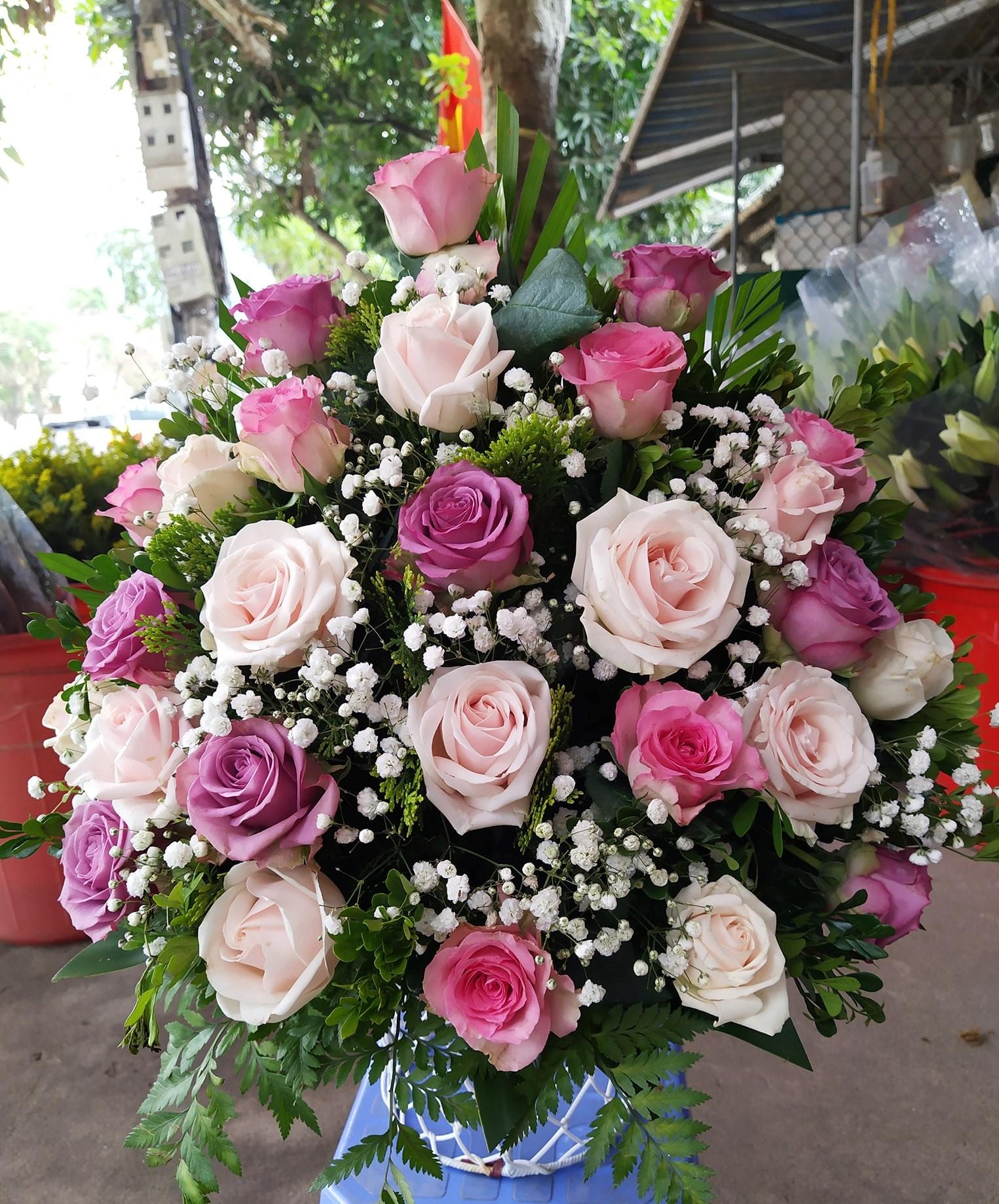 Điện hoa thành phố Vinh Nghệ an