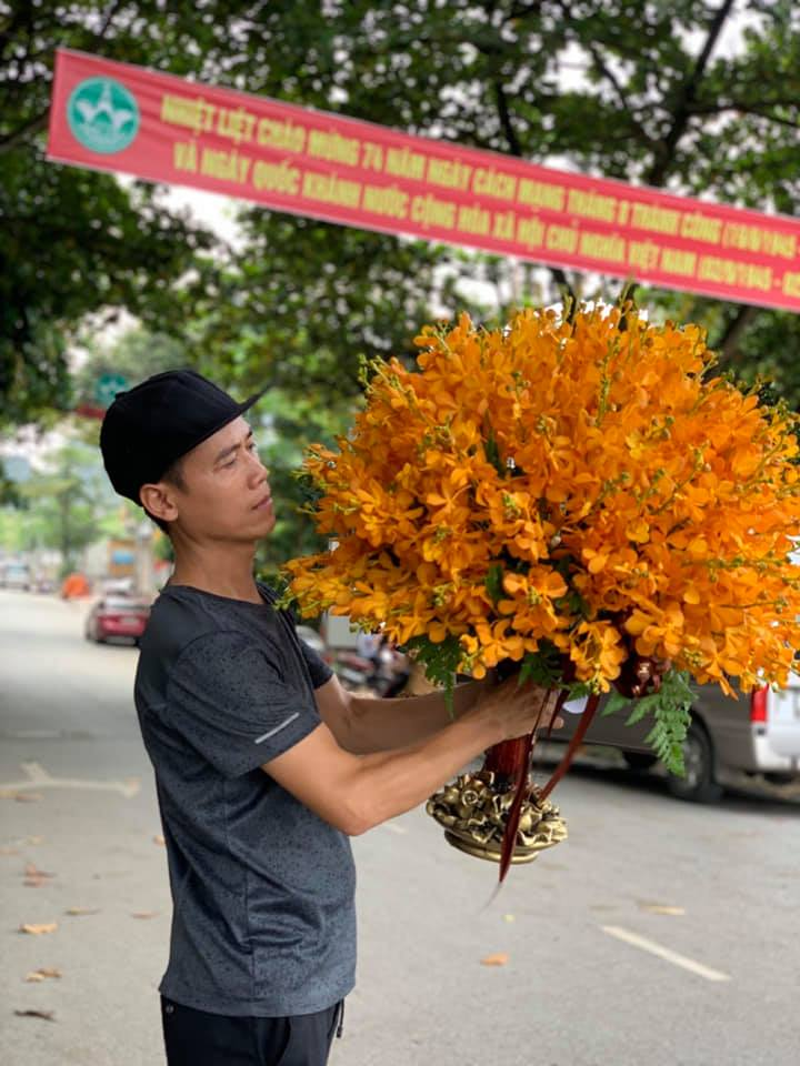 Điện hoa thành phố Đà Nẵng