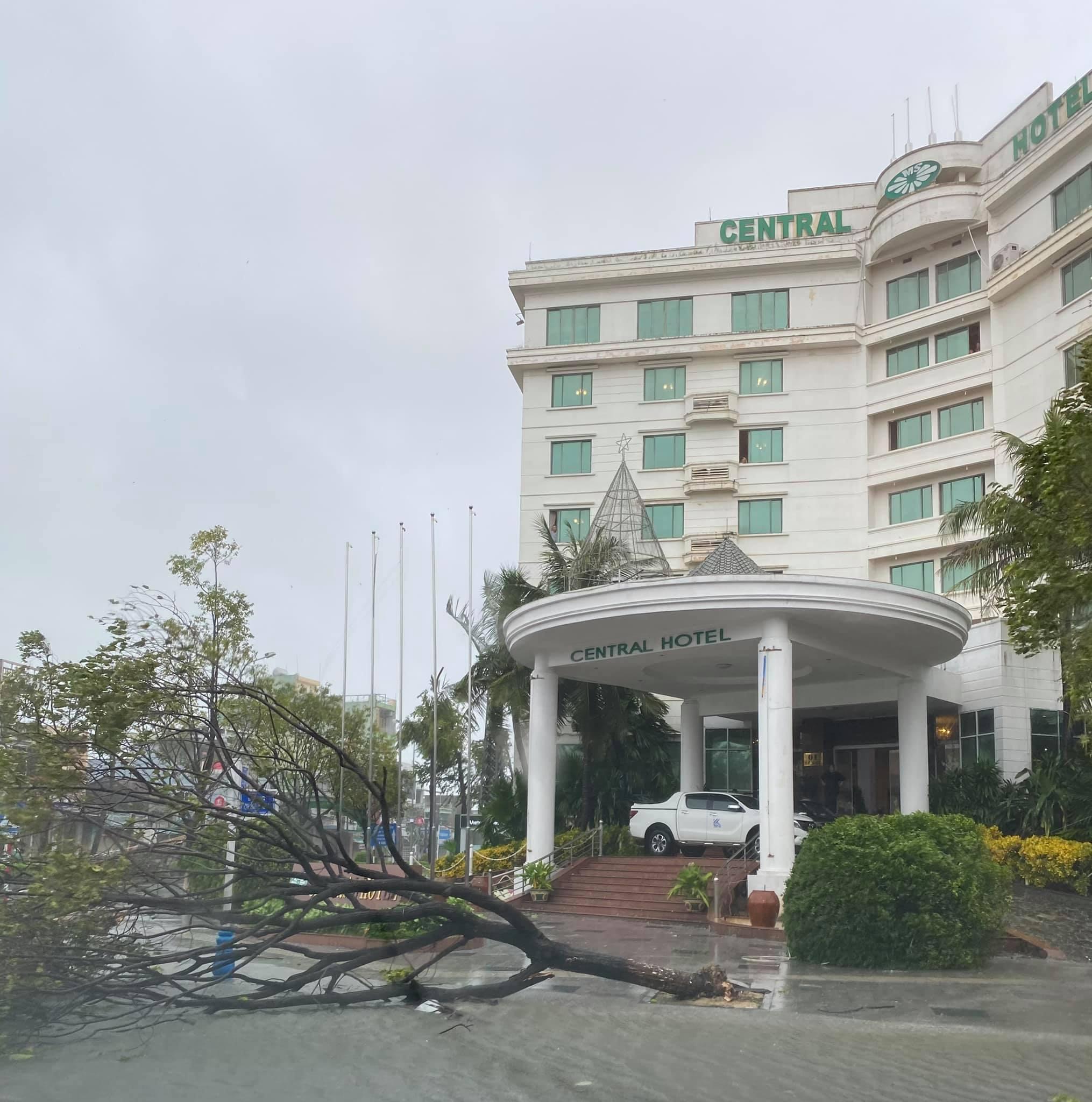 Quảng Ngãi sau bão số 9, bão Molave