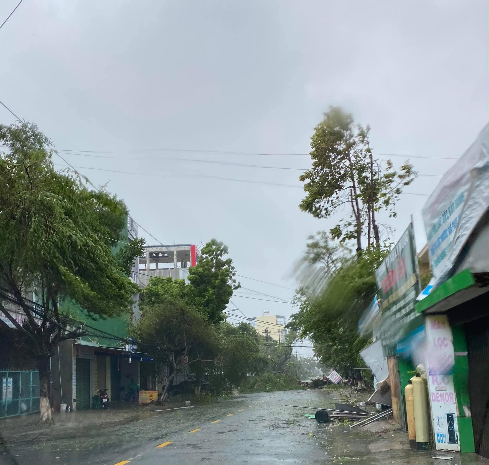 Quảng Ngãi sau bão số 6, bão Molave