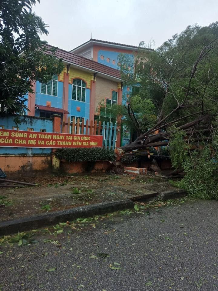 Tam Kỳ sau bão Molave