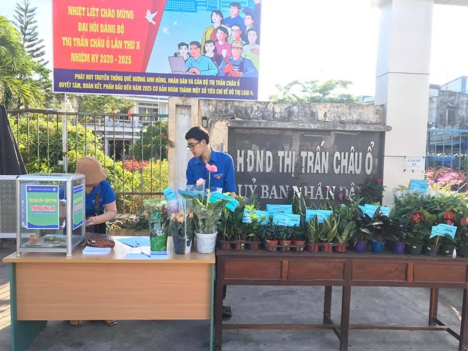 Shop hoa tươi Châu Ổ, Bình Sơn