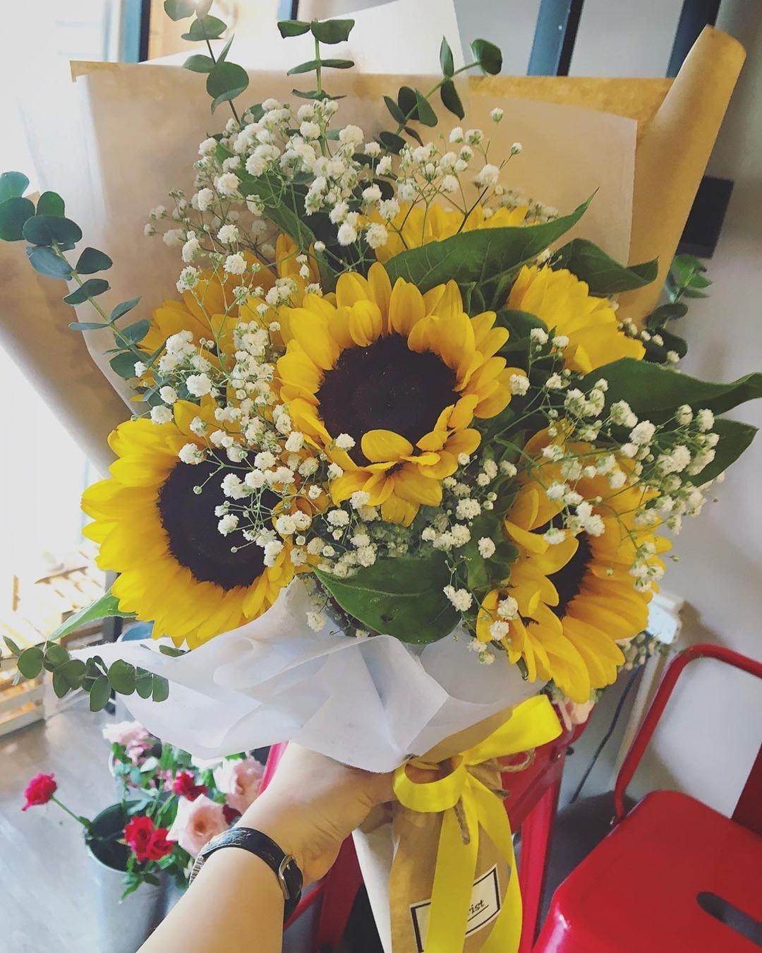 Hoa hướng dương tặng ngày nhà giáo việt nam