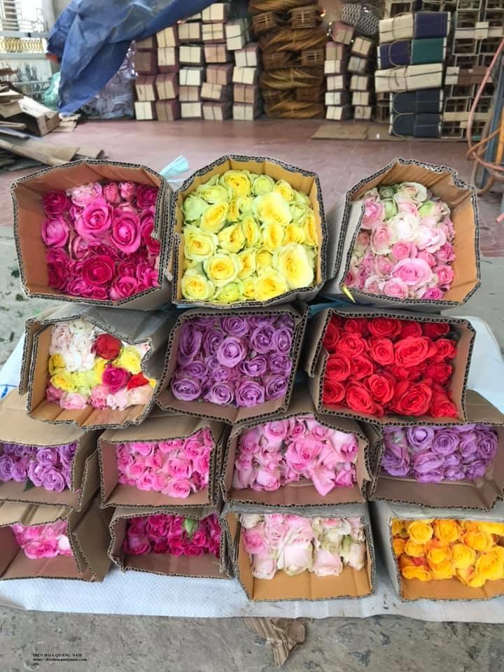 Điện hoa Quảng Nam - Shop hoa tươi Duy Xuyên